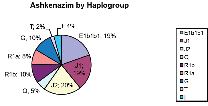 Ashkenazi haplogroups [Archive] - The Apricity Forum: A European