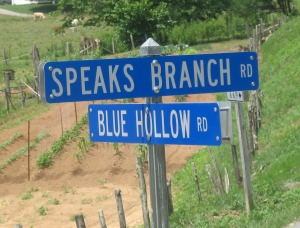 Speaks branch road cropped